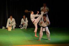 Alunos de taekwondo da regi�o de Bom Princ�pio apresentaram t�cnicas diversas