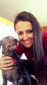 Vira Lata do Caí: trabalho voluntário pelo bem dos animais