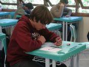 Câmpus Feliz tem 12 alunos classificados para a segunda fase da 11ª OBMEP